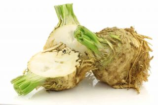 CELERY ROOT CONVENTIONAL